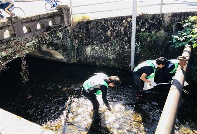 蛍橋清掃開始