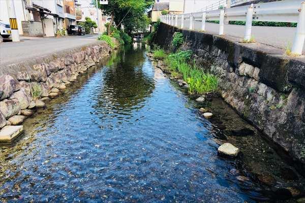 本宮川 本宮橋 付近の写真