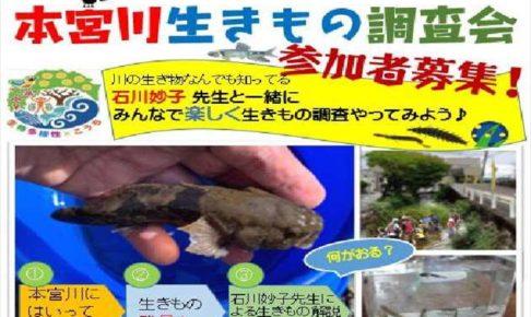 本宮川 生きもの調査会